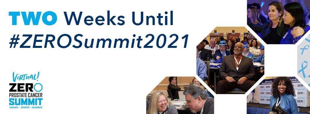 Two weeks until #ZEROSummit2021