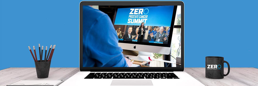 Virtual Summit Conference